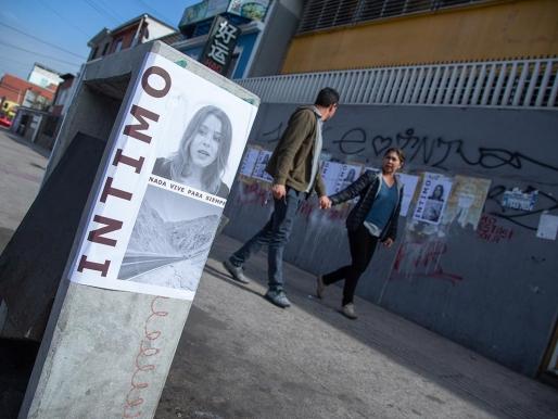 Íntimo (nada vive para siempre):  más allá de las murallas de la galería