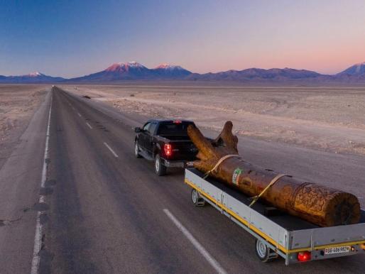 BLOCH: Dos toneladas de madera suiza activan el arte a través del mundo