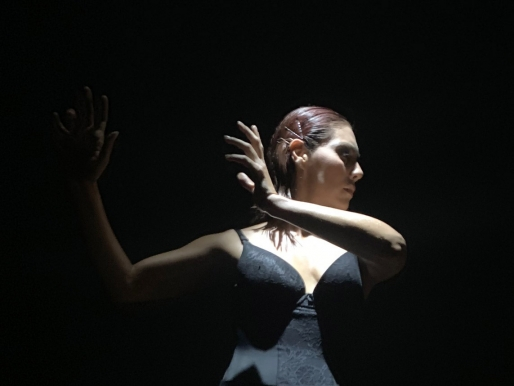 Lanzamiento de SACO9 Festival de Arte Contemporáneo: Is now or never